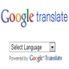 Google Translate Widget by Seo.uk.net